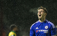 Chelsea U21 v Norwich City U21 - U21 Premier League - 17.02.2016