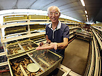 "May 23, 2016, Matsusaka, Japan - Toshihide Takase, a Japanese iron factory owner, shows Burgandy snails, which is designated as an endangered species in France at his cultivation fam ""Escargot farm"" in Matsusaka in Mie prefecture, central Japan on Monday, May 23, 2016. Takase suceeded to breed highest quality Escargot de Bourgogne (Helix Pomatia kind) in 1995 and now cultivating 200,000  rare snails and serving plates of homemade ""Escargot a la Bourguignonne"" (snails in garlic butter) to visitors at his farm.    (Photo by Yoshio Tsunoda/AFLO) LWX -ytd-"