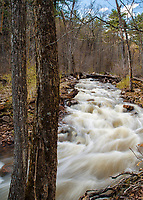 Otter Creek flows through Baxter's Hollow State Natural Area in the Baraboo Hills area of central Wisconsin, Sauk County, Wisconsin