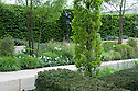 The Laurent-Perrier Garden,  designed by Ulf Nordfjell, Gold medal winner, RHS Chelsea Flower Show 2013. The upright, columnar trees area Cypress Oaks (Quercus fastigiata 'Koster').