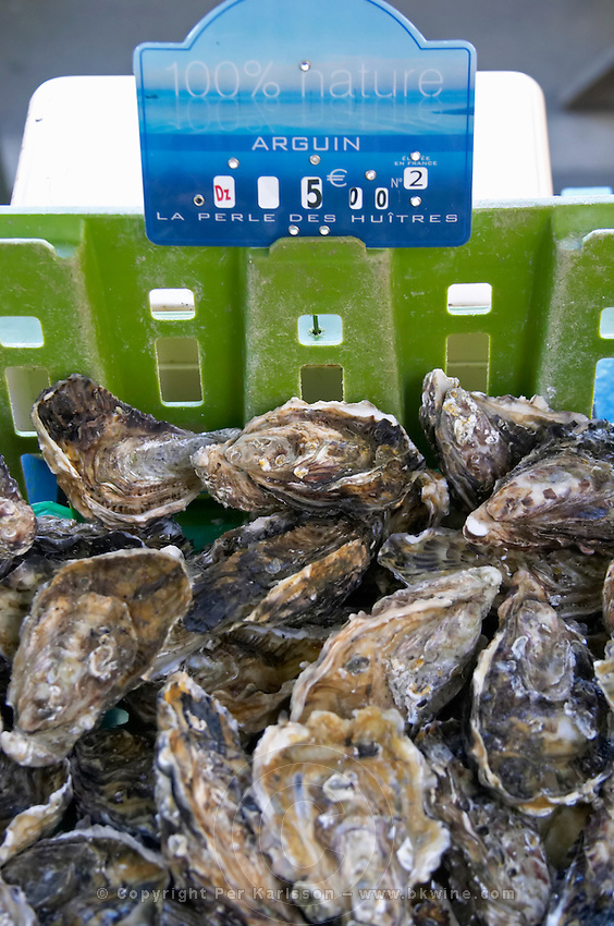 On a street market. On a street market. Oysters. Bordeaux city, Aquitaine, Gironde, France