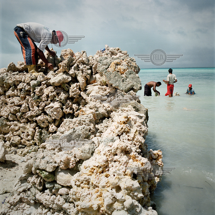 Families on Tarawa spend many hours building coral rock walls to either protect their homes or to reclaim land eroded away by a combination of storm surge and sea level rise. They build a walled enclosure filling and compacting it with organic and inorganic waste. The environmental and social issues concerned with damaging the coral reef seems to be a secondary concern to protection of the land and themselves in this process.