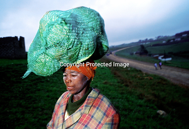 Margarette Shenge, age 36 on November 16,1999 outside her home in Nqbeni, South Africa. She's infected by the Aids virus and her husband died of the disease in 1997. Two of her four children are also infected by Aids. Margarette works at a farm and makes about $40 a month. .(Photo: Per-Anders Pettersson/ Liaison Agency)