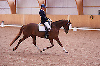 Helen Johansson riding seven year old Strano (Hejbols De Strano, e De Noir - Golfstrom II, born 2007, breeder Per Torp, owner Helen Johansson) in dressage competition Msv C:1.  <br />