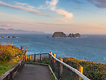 Cape Meares State Park, OR: Pathway leads down to a vew of Three Arch Rocks and the Oregon coast from Cape Meares, Tillamook County