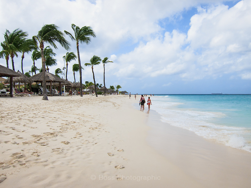 Beach in Aruba with palm trees, turquoise water and sand