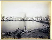 BNPS.co.uk (01202 558833)<br /> Pic: Nosb&uuml;sch&amp;Stucke/BNPS<br /> <br /> Sydney from Pyrmont.<br /> <br /> A stunning collection of photographs of Sydney decades before the iconic harbour bridge and opera house were built has been unearthed after 129 years.<br /> <br /> The black and white photo album captures the bustling city centre, picturesque main harbour and famous beaches of the future tourist hot-spot. <br /> <br /> The photos were taken by celebrated Australian photographer Henry King in 1888 who was born in England but emigrated to Australia at a young age and spent the rest of his life there.<br /> <br /> More recently they have fallen into the hands of a German collector who has decided to put them on the market and they are tipped to sell for &pound;1,800.<br /> <br /> Many of Sydney's most recognisable landmarks including Manly beach and Coogee bay look very different to what backpackers would encounter today.<br /> <br /> King also took various photos of Circular Quay - the city's main harbour - but missing from them are images of the Sydney Harbour Bridge and Sydney Opera House as these landmarks were both not built until well into the 20th century.