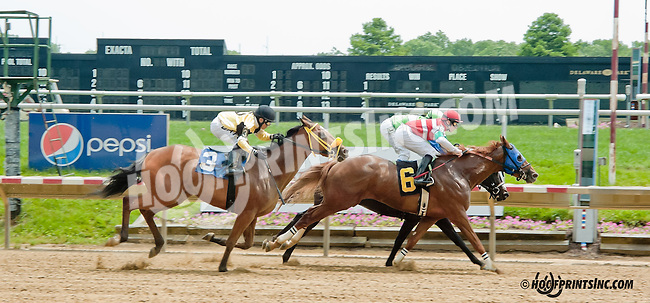 Nuestra Señor winning at Delaware Park on 6/12/13