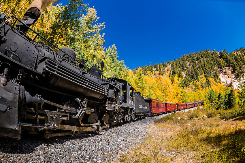 The Cumbres & Toltec Scenic Railroad train passing through peak autumn color on the 64 mile run between Antonito, Colorado and Chama, New Mexico. The railroad is the highest and longest narrow gauge steam railroad in the United States with a track length of 64 miles. The train traverses the border between Colorado and New Mexico, crossing back and forth between the two states 11 times. The narrow gauge track is 3 feet wide. It runs over 10,015 ft (3,053 m) Cumbres Pass.