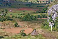 Cuba, Pinar del Rio Region, Valle de Viñales (Vinales) Area.  Limestone Mogote on the right.