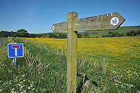 North Lancashire bridleway sign, Whitewell, Clitheroe, Lancashire. Forest of Bowland....Copyright..John Eveson, Dinkling Green Farm, Whitewell, Clitheroe, Lancashire. BB7 3BN.01995 61280. 07973 482705.j.r.eveson@btinternet.com.www.johneveson.com
