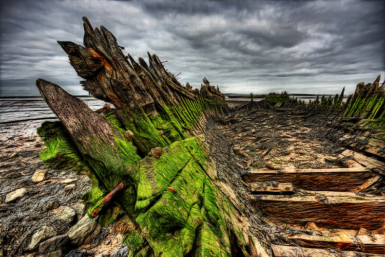 Green algea build up and rotting wood and nails on an old abandoned boat wreck beached in mud on the river swale