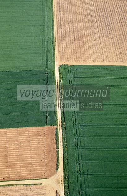 Europe/France/Pays de la Loire/49/Maine-et-Loire/Env de Saumur: Champs et cultures -  vue aérienne