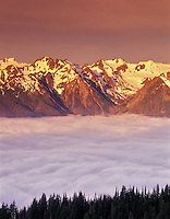 Mount Olympus and fog at sunrise. Olympic National Park, Washington.