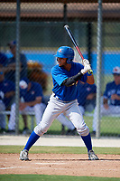 Toronto Blue Jays center fielder Steward Berroa (14) at bat during a Florida Instructional League game against the Pittsburgh Pirates on September 20, 2018 at the Englebert Complex in Dunedin, Florida.  (Mike Janes/Four Seam Images)