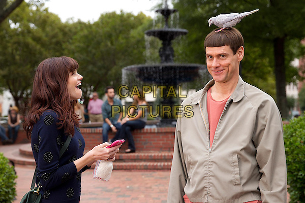 Rachel Melvin, Jim Carrey<br /> in Dumb and Dumber To (2014) <br /> *Filmstill - Editorial Use Only*<br /> CAP/NFS<br /> Image supplied by Capital Pictures