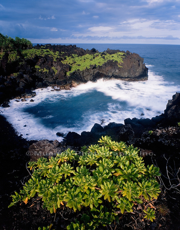 Pailoa Bay, Maui Waianapanapa State Park, HAWAII