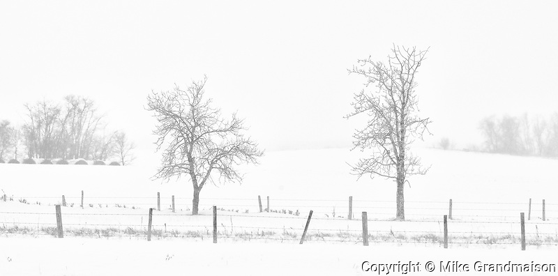 Whiteout on the Canadian prairie<br /> Pelley<br /> Saskatchewan<br /> Canada