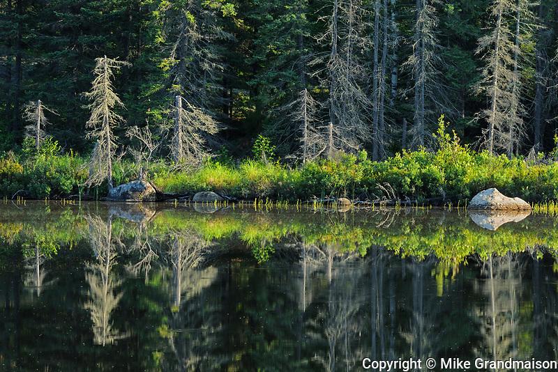 Reflection at Graphic Lake, Near Kenora, Ontario, Canada