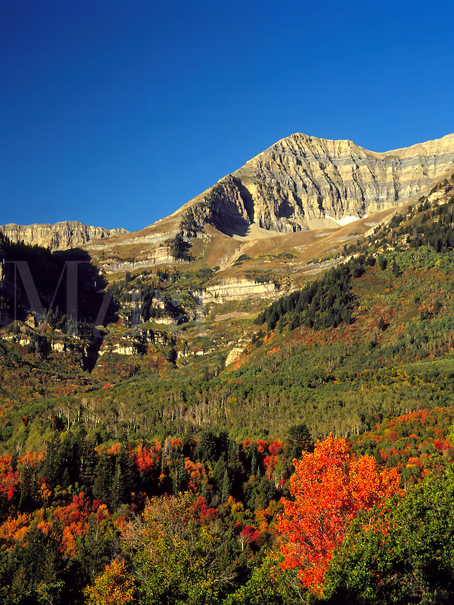 Art in Nature 9409-0158 - The backside of Timpanogos Mountain in early autumn. Wasatch Range, Rocky Mountains, Utah.