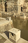Israel, the Frigidarium, a cold water pool in the ancient Roman baths of Hamat Gader