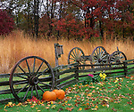Bureau, County, IL<br /> Wagon wheel and fenceline along native tallgrass prairie and woods - late fall