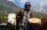 """Europe/Italie/Val d'Aoste/Env d'Aoste/Planaval: Dans une estive    un éleveur avec une de ses bêtes et son  fromage """"Fontine"""" Fromage au lait cru de vache"""
