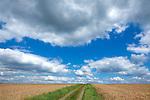 Europa, DEU, Deutschland, Hessen, Odenwald, Michelstadt, Agrarlandschaft, Sommer, Himmel, Cumuluswolken, Kategorien und Themen, Natur, Umwelt, Landschaft, Jahreszeiten, Stimmungen, Landschaftsfotografie, Landschaften, Landschaftsphoto, Landschaftsphotographie, Wetter, Himmel, Wolken, Wolkenkunde, Wetterbeobachtung, Wetterelemente, Wetterlage, Wetterkunde, Witterung, Witterungsbedingungen, Wettererscheinungen, Meteorologie, Bauernregeln, Wettervorhersage, Wolkenfotografie, Wetterphaenomene, Wolkenklassifikation, Wolkenbilder, Wolkenfoto....[Fuer die Nutzung gelten die jeweils gueltigen Allgemeinen Liefer-und Geschaeftsbedingungen. Nutzung nur gegen Verwendungsmeldung und Nachweis. Download der AGB unter http://www.image-box.com oder werden auf Anfrage zugesendet. Freigabe ist vorher erforderlich. Jede Nutzung des Fotos ist honorarpflichtig gemaess derzeit gueltiger MFM Liste - Kontakt, Uwe Schmid-Fotografie, Duisburg, Tel. (+49).2065.677997, archiv@image-box.com, www.image-box.com]