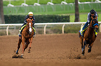 ARCADIA, CA - APRIL 02: Justify with Drayden Van Dyke <br /> (Left) work in company with Hoppertunity  completing final preparations for the Santa Anita Derby at Santa Anita Park on April 02, 2018 in Arcadia, California. (Photo by Alex Evers/Eclipse Sportswire/Getty Images)