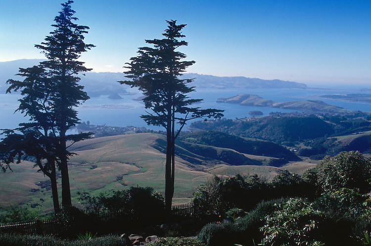 Otago Peninsula overlook, South Island, New Zealand