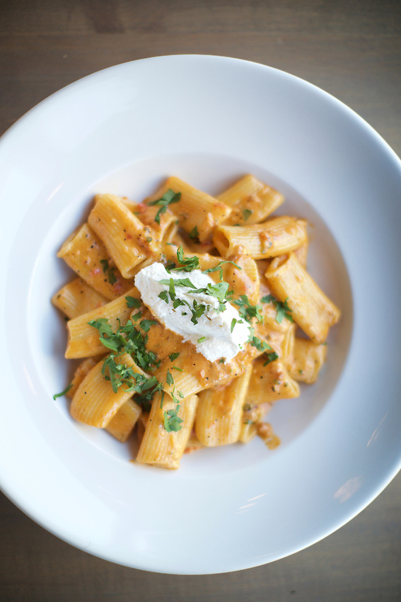 Queens, NY - July 9, 2017:  Rigatoni in Vodka Sauce with whipped Ricotta at Allora Italian Kitchen and Bar in Bayside.<br />