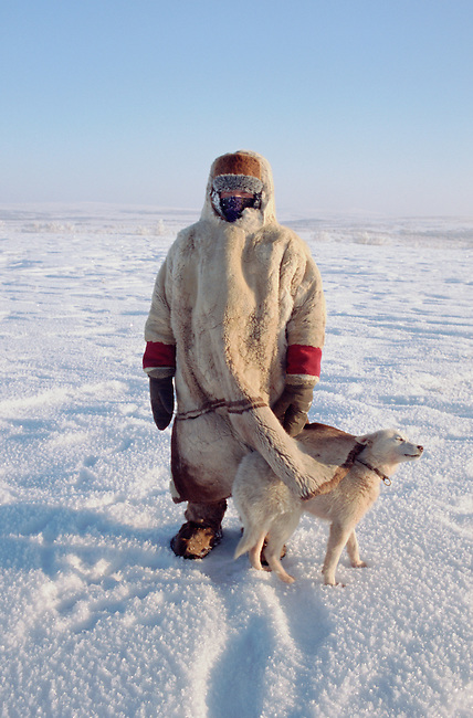 Olga Kirillova, a Sami woman from Lovozero, out on the tundra with her reindeer herding dog, Dik. Murmansk, NW Russia