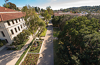 View of the Occidental College campus, including the area near the Academic Quad. (Photo by Marc Campos, Occidental College Photographer)
