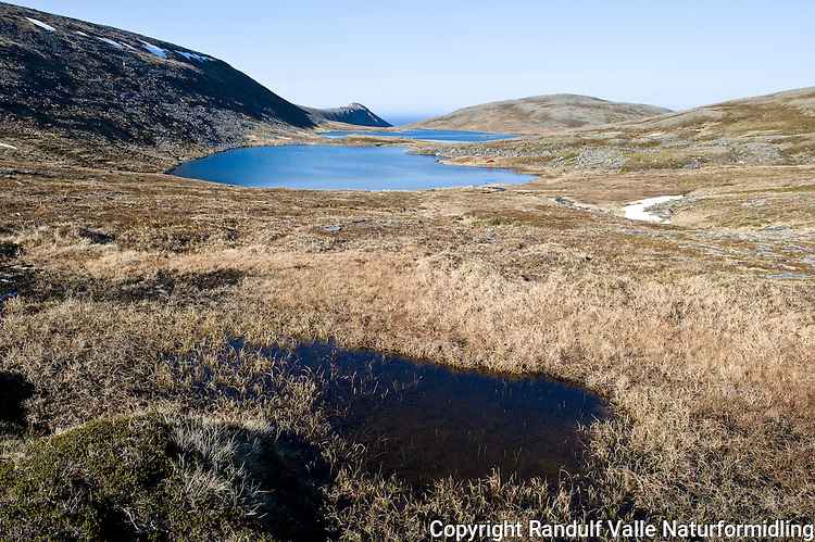 Knivskjelvatna på Magerøya. ---- The Knivskjelvatna lakes on Magerøya.