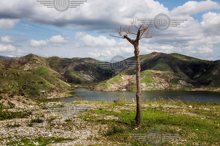 A lone tree stands on the coast in the hills of southwest Haiti, on the road between Les Cayes and Jeremie. In 1923 over 60 percent of Haiti's land was forested. In 2006, less than two percent of the land was forested. Hurricane Matthew, the first category 5 Atlantic hurricane since 2007, hit the island on 4 October 2016. Winds of up to 230km/h (145mph) tore across the worst affected areas, mainly in the south of the island, killing around over 1,000 people and leaving hundreds of thousands in need of assistance.