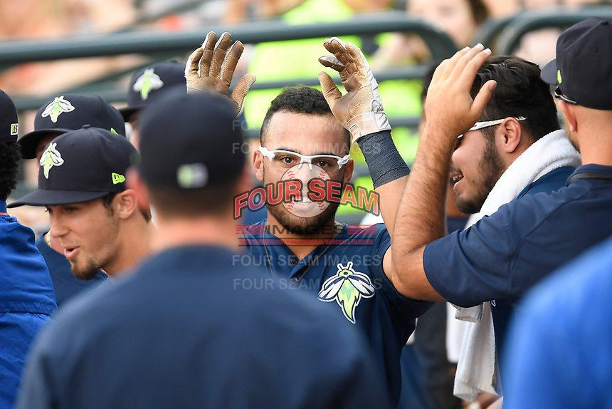 Center fielder Desmond Lindsay (2) of the Columbia Fireflies is greeted after scoring a run in a game against the Charleston RiverDogs on Friday, June 9, 2017, at Spirit Communications Park in Columbia, South Carolina. Columbia won, 3-1. (Tom Priddy/Four Seam Images)