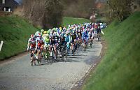 peloton through the Holleweg<br /> <br /> 58th E3 Harelbeke 2015