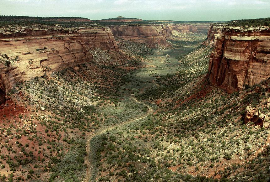 A Colorado canyon landscape.