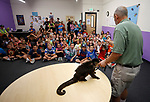 Gabe Kerschner, with Conservation Ambassadors, shows off Hobo, a weeper Capuchin, during a presentation at the Boys &amp; Girls Club of Western Nevada in Carson City, Nev., on Tuesday, June 12, 2018 as part of the Carson City Library's Summer Learning Challenge. <br /> Photo by Cathleen Allison/Nevada Momentum