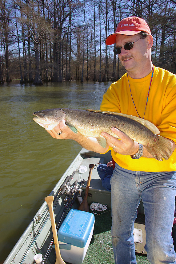 Angler with bowfin caught in Arkansas' Old Town Lake