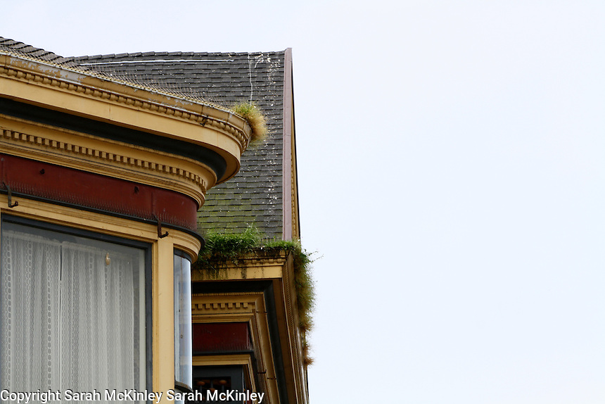 Grass grows from the gutters on a building in Old Town Eureka in Humboldt County in Northern California.