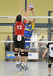 2015-10-24 / volleybal / seizoen 2015-2016 / Geel - Elen / Een netduel tussen Van Houdt (nr 12) (Geel) en Schulpen (r) (Elen)