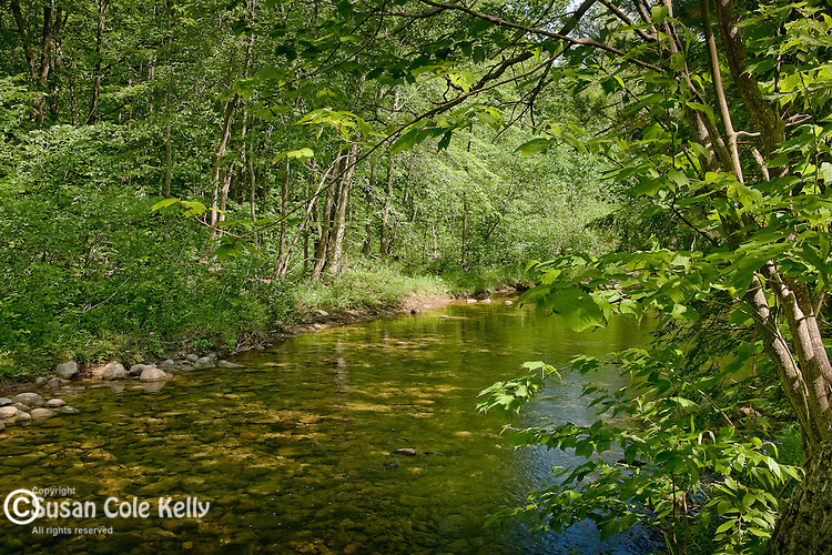 The Wild River flows through the White Mountain National Forest in western Maine.