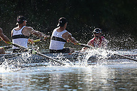 All Photos - Monday - Ross Regatta 2017