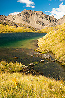 Alpine tarns, Nelson Lakes National Park, South Island, New Zealand, NZ