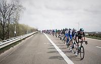 Luke Rowe (GBR/SKY) paces the peloton<br /> <br /> 105th Scheldeprijs 2017 (1.HC)<br /> 1 Day Race: Mol › Schoten (BEL/202km)
