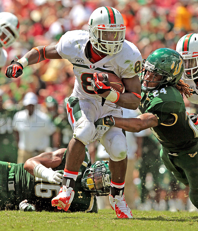 Duke Johnson rushed for 84 yards in 14 carries during the University of Miami vs the University of South Florida football game at Raymond James Stadium in Tampa on Saturday, September 28, 2013.