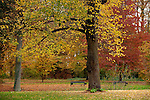 Europa, DEU, Deutschland, Nordrhein Westfalen, NRW, Rheinland, Niederrhein, Ruhrgebiet, Duesseldorf-Kalkum, Schlosspark von Schloss Kalkum, Herbst,Herbststimmung, , Kategorien und Themen, Natur, Umwelt, Landschaft, Jahreszeiten, Stimmungen, Landschaftsfotografie, Landschaften, Landschaftsphoto, Landschaftsphotographie, ......[Fuer die Nutzung gelten die jeweils gueltigen Allgemeinen Liefer-und Geschaeftsbedingungen. Nutzung nur gegen Verwendungsmeldung und Nachweis. Download der AGB unter http://www.image-box.com oder werden auf Anfrage zugesendet. Freigabe ist vorher erforderlich. Jede Nutzung des Fotos ist honorarpflichtig gemaess derzeit gueltiger MFM Liste - Kontakt, Uwe Schmid-Fotografie, Duisburg, Tel. (+49).2065.677997, archiv@image-box.com, www.image-box.com]
