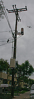 A cell phone antenna (cylinder, upper center)  mounted on a utility pole near the intersection of Bob Street and Worden Street in Point Loma, January 3, 2008.  At least one neighbor near the site was unaware of what the antenna was.
