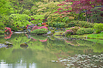 Seattle, WA: Seattle View of the lake and the Tea Garden in the Japanese Garden in the Washington Park Arboretum